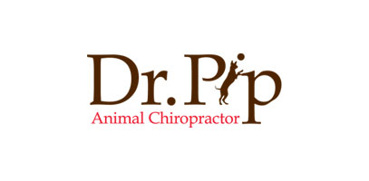 Logo Design Primary- Dr. Pip